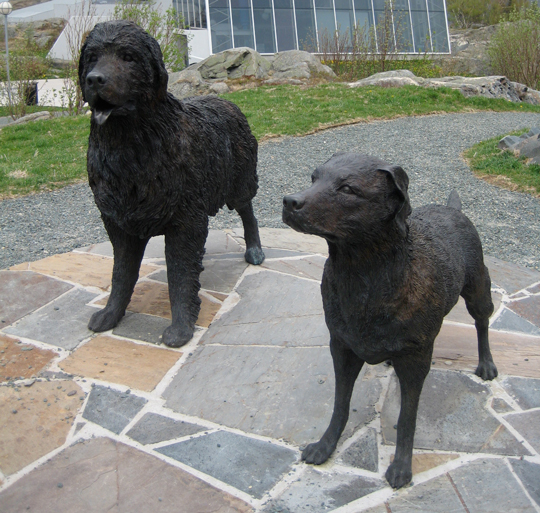 The Dog Statues
