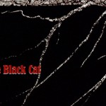 "Blogoween: Masters of Horror ""The Black Cat"" (2007)"
