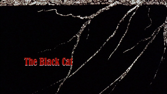 account of the life of edgar allan poe and analysis of his short story the black cat Free essay on critical analysis of the black cat by edgar allan poe  the black cat by edgar allan poe the short story  deed early in his life that he is.