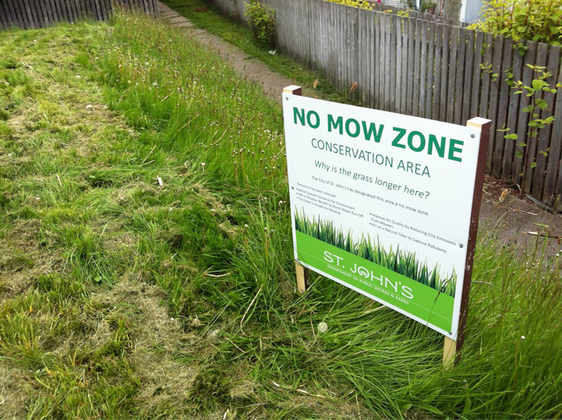 The city says no mo' mow where it isn't safe to do so.